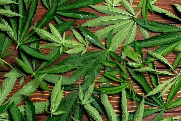 Feuille de cannabis sur fond de table en bois