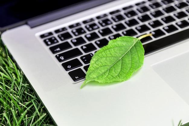 Feuille sur clavier d'ordinateur portable sur fond
