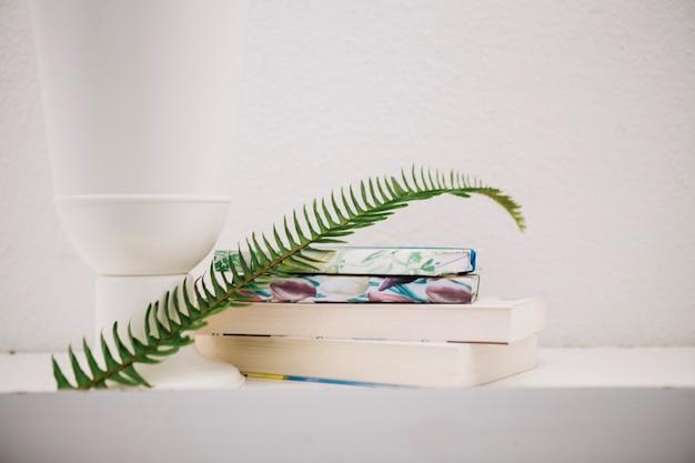 Feuille de fougère sur une pile de livres