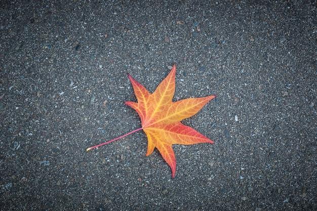 La feuille jaune d'un arbre se trouve sur l'asphalte texturé gris.
