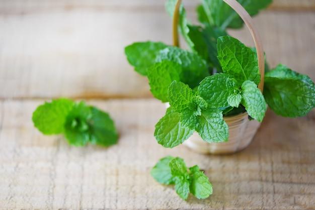 Feuille de menthe poivrée dans un panier en bois feuilles de menthe fraîche pour herbes et aliments végétaux naturels