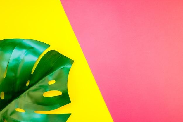Feuille de monstera jungle tropicale sur brillant