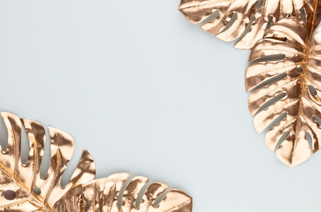Feuille d'or monstera sur bleu. feuille de palmier, vue plate et vue de dessus.