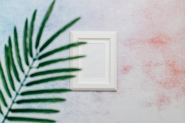 Feuille de palmier et cadre blanc avec un espace pour le texte.