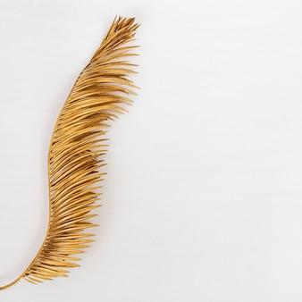 Feuille de palmier de couleur dorée. plantes métalliques peintes. fond d'été créatif avec espace de copie.