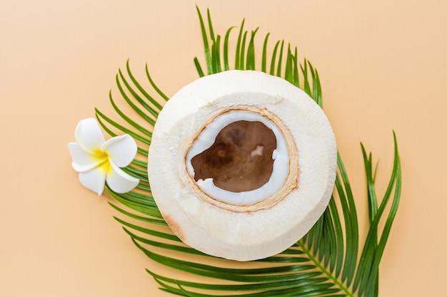 Feuille de palmier, fleur et noix de coco sur orange pastel