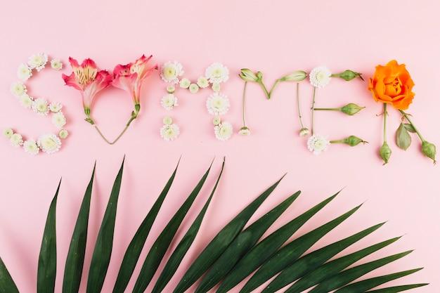 Feuille de palmier près de l'écriture d'été