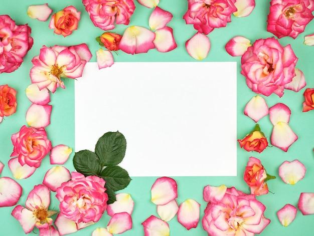 Feuille de papier blanc vide et boutons de roses roses