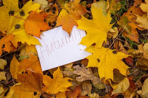 Une feuille de papier avec l'inscription automne se trouve dans des feuilles d'automne sèches