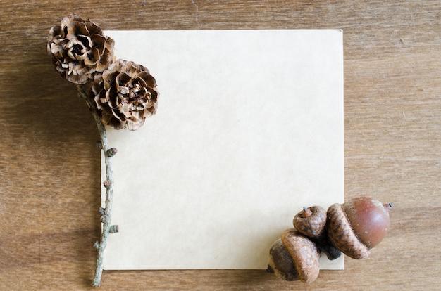 Feuille de papier vide avec des glands et des cônes.