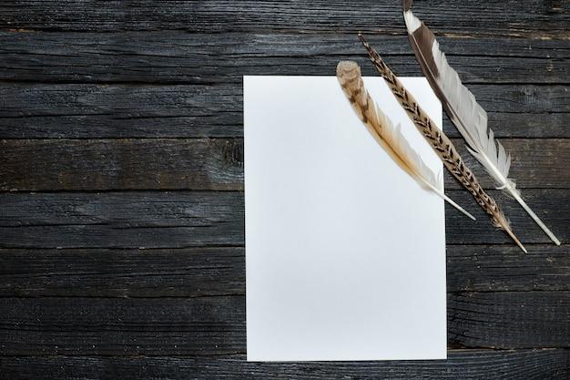 Feuille de papier vierge et plume