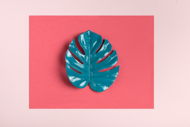 Feuille turquoise sur fond rose