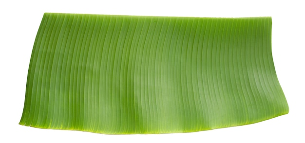 Feuille verte de banane sur fond blanc.