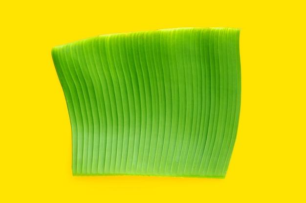 Feuille verte de banane sur fond jaune.