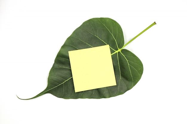 La feuille verte de bodhi avec du papier jaune