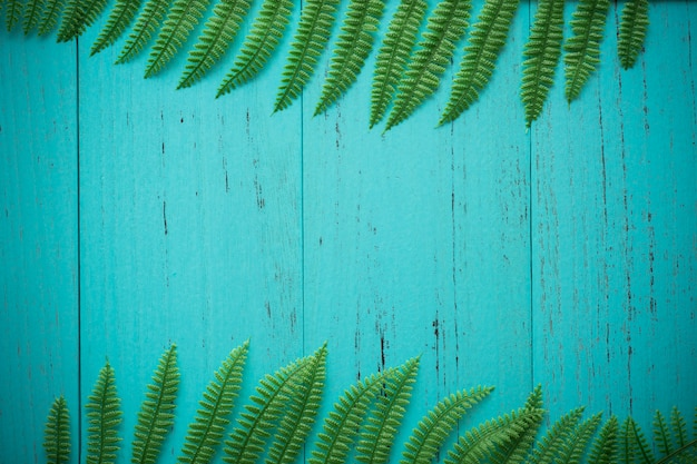 Feuille verte nature avec bois shappy