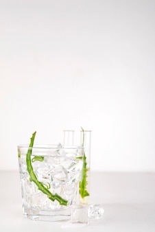 Feuilles d'aloe vera fraîches et jus d'aloe vera en verre sur fond blanc