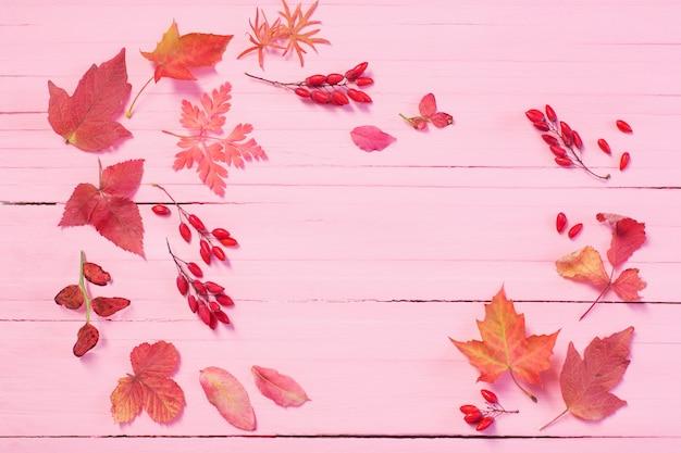 Feuilles d'automne sur bois rose