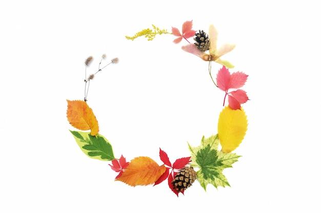 Feuilles d'automne cadre guirlande et éléments d'automne avec fond