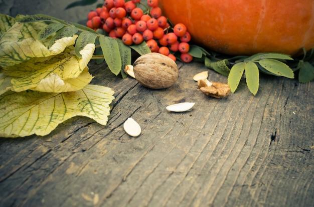 Feuilles d'automne et citrouille