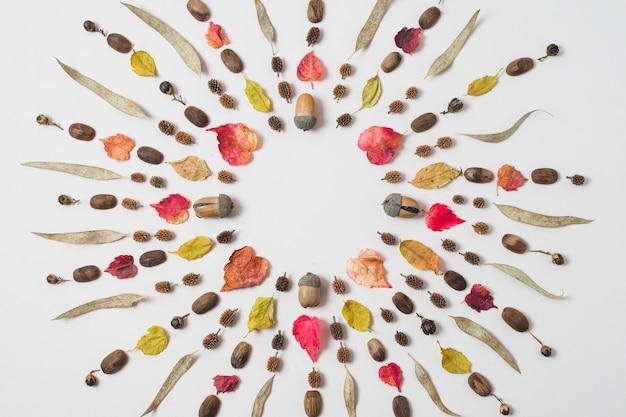 Feuilles d'automne colorées cadre rond