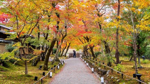 Feuilles d'automne colorées et chemin à pied dans le parc, kyoto au japon. le photographe prend une photo à l'automne.