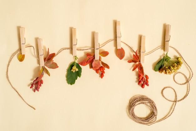 Feuilles d'automne dans une corde à linge tenue par des pinces à linge sur bois turquoise