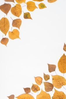 Feuilles d'automne dans deux coins