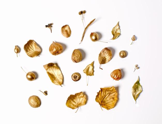 Feuilles d'automne dorées, pommes sauvages et fleurs de physalis
