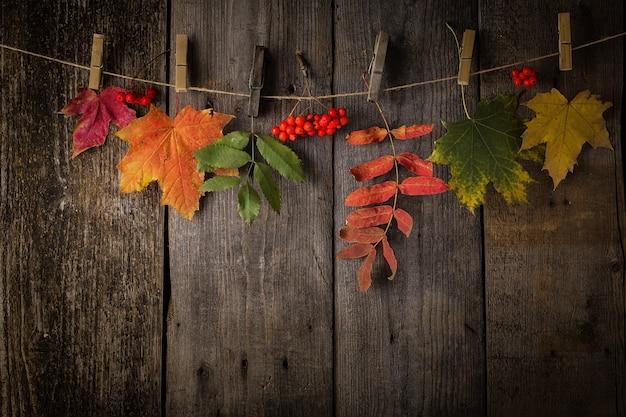 Feuilles d'automne sur un fond en bois foncé naturel