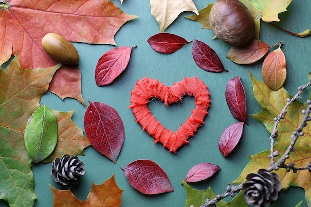 Feuilles d'automne fond sur un concept de table isolé vert nature