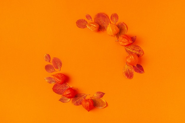 Feuilles d'automne sur fond orange