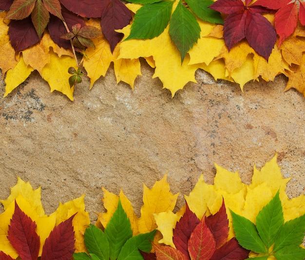 Feuilles d'automne sur fond de pierre