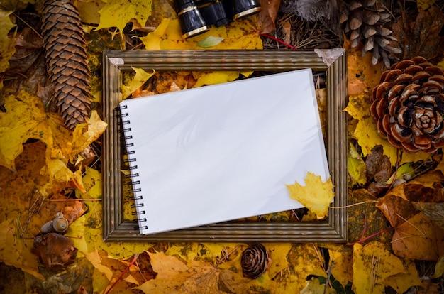 Feuilles d'automne jaune, espace de fond pour le texte