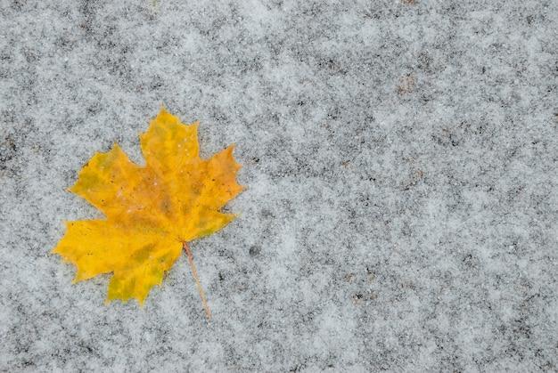 Feuilles d'automne sur la neige, fond saisonnier