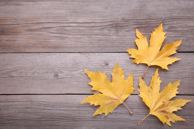 Feuilles d'automne orange sur une table grise