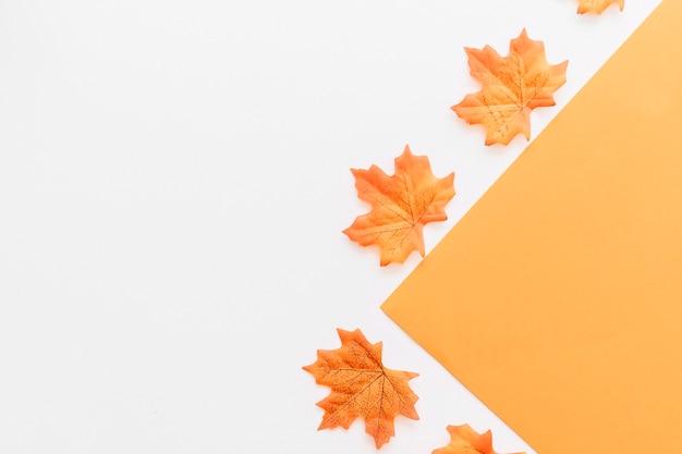 Feuilles d'automne placées en dehors de la forme orange
