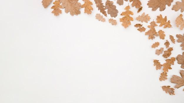Feuilles d'automne à plat avec espace de copie