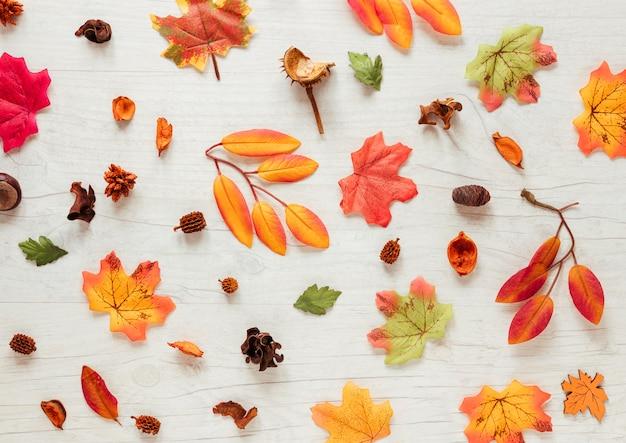 Feuilles d'automne plat poser sur fond en bois