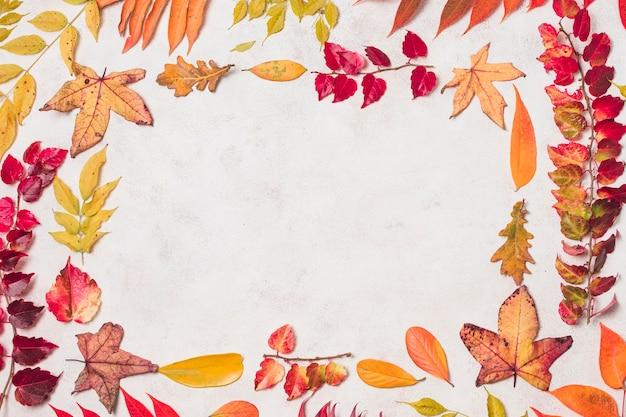 Feuilles d'automne plates double cadre