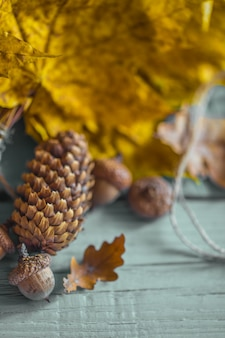 Feuilles d'automne, pomme de pin et glands