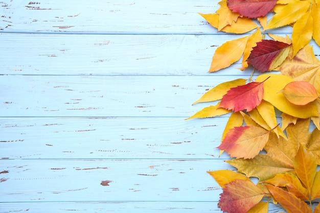 Feuilles d'automne rouge et orange sur une table bleue