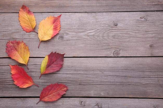 Feuilles d'automne rouge et orange sur une table grise