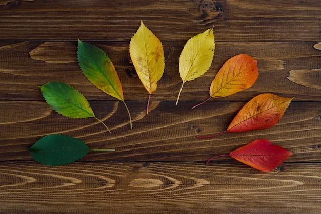 Feuilles d'automne transition du vert au rouge sur fond en bois