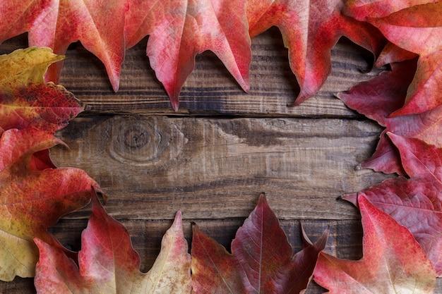Feuilles d'automne sur vintage noir