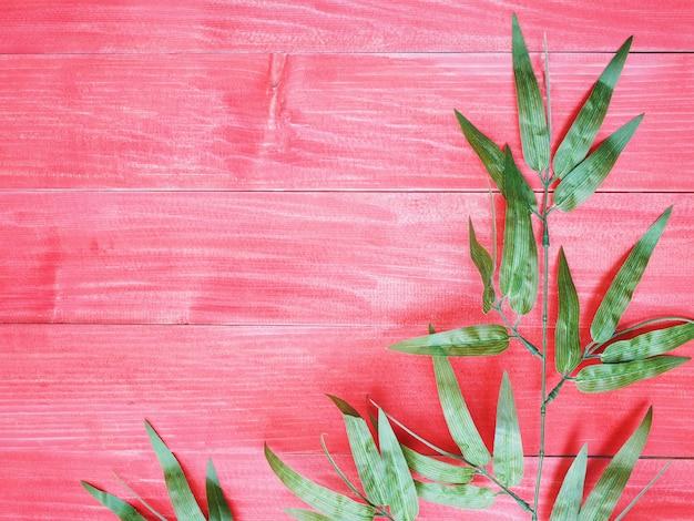 Feuilles de bambou vert sur bois rouge
