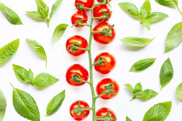 Feuilles de basilic frais avec des tomates cerises sur blanc.