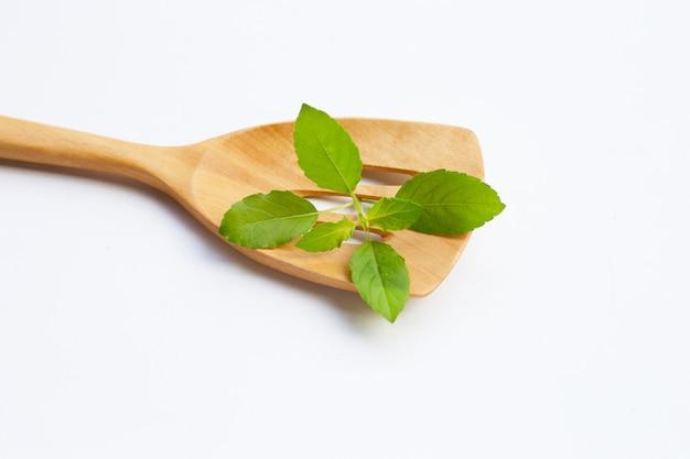 Feuilles de basilic sacré sur une spatule en bois sur blanc