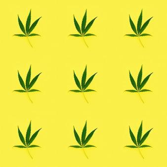Feuilles de cannabis modèle sans couture sur jaune