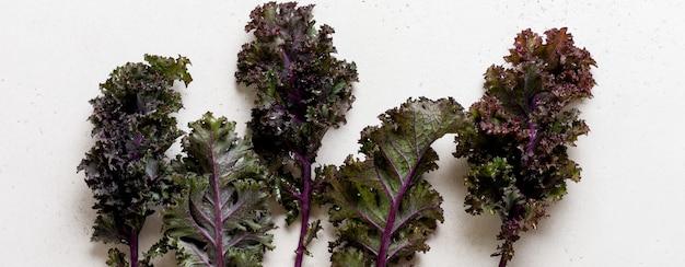 Feuilles de chou frisé vert frisé sur une planche à découper sur un fond gris clair en ardoise, en pierre ou en béton. mise au point sélective. nourriture végétarienne saine. bannière.